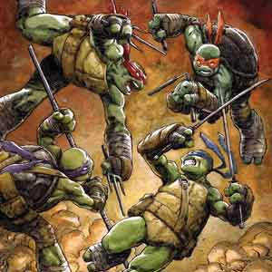 IDW comics' Teenage Mutant Ninja Turtles- What is the best hero for me